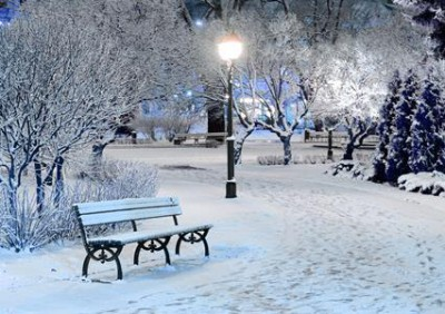 931-snowflake-winter-wonderland-2